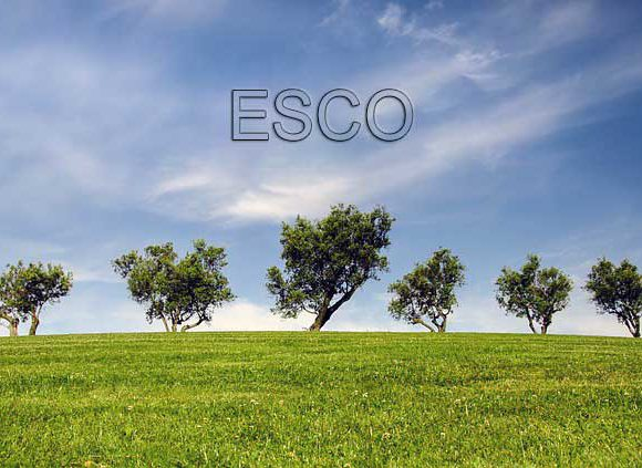 What's an ESCO and How Can They Help?